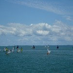 Optimist fleet